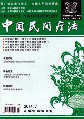 中国民间疗法杂志杂志封面