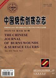 中国烧伤创疡杂志杂志杂志封面
