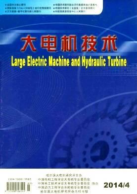 大电机技术