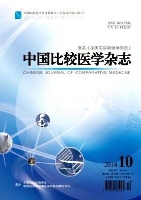 中国比较医学杂志杂志杂志封面