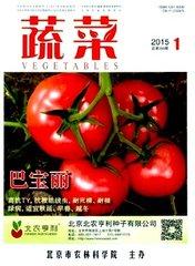 蔬菜杂志杂志封面