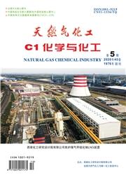 天然气化工-C1化学与化工